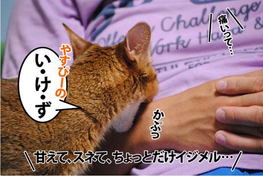 20110818_04.jpg