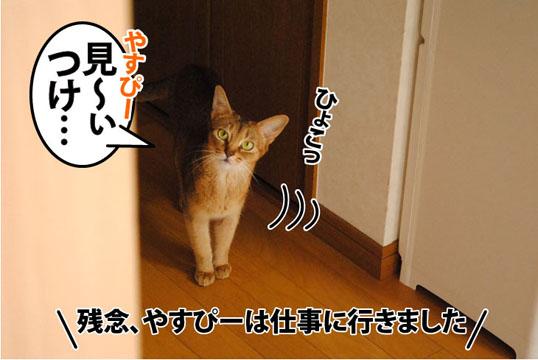 20110819_01.jpg