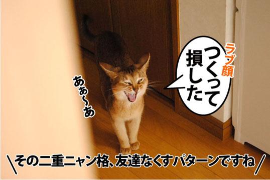 20110819_02.jpg