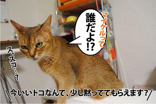 20110820_02.jpg