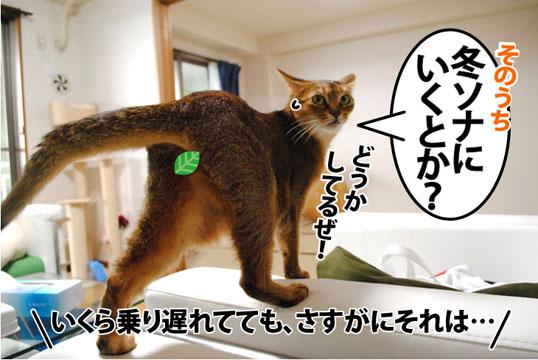 20110820_03.jpg