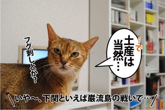 20110822_04.jpg