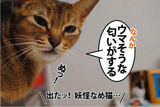 20110823_01.jpg
