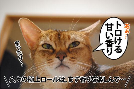 20110823_03.jpg
