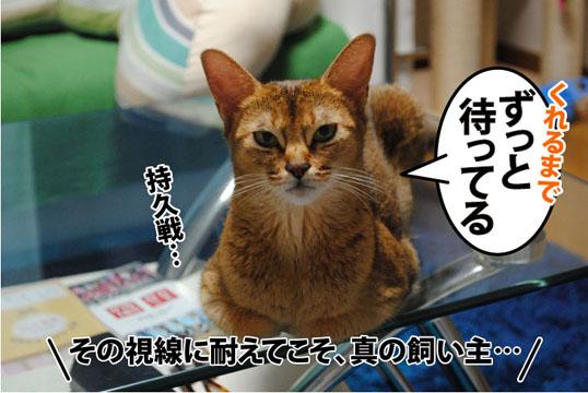 20110823_04.jpg