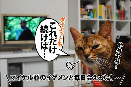 20110825_02.jpg