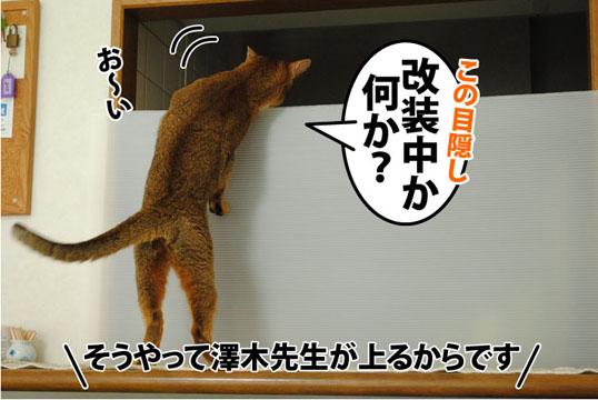 20110826_01.jpg