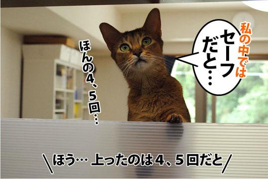20110826_02.jpg