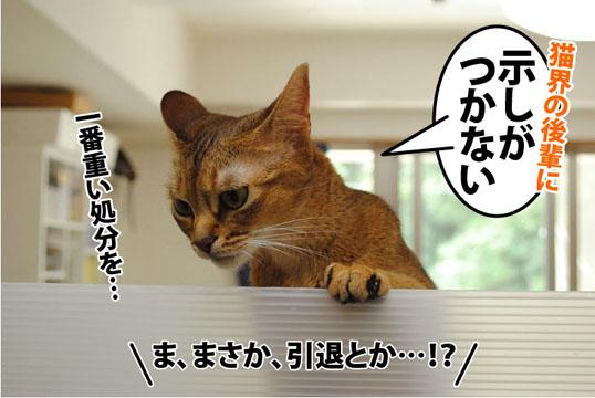 20110826_03.jpg