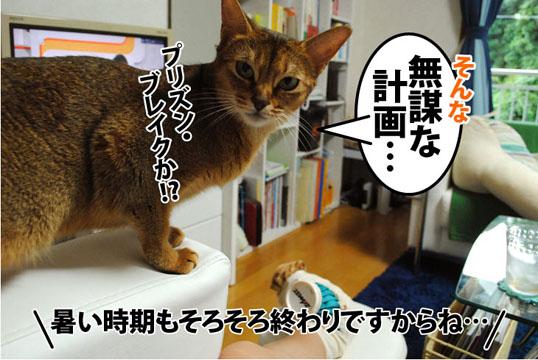 20110829_03.jpg