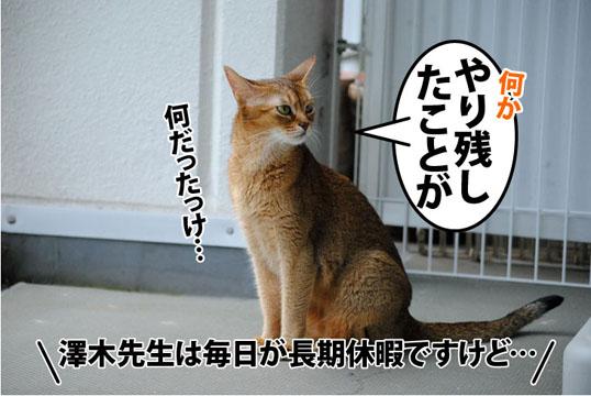 20110902_02.jpg