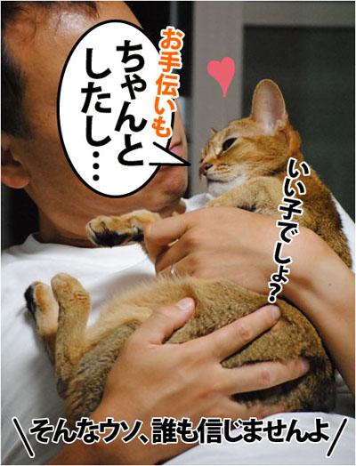 20110905_03.jpg