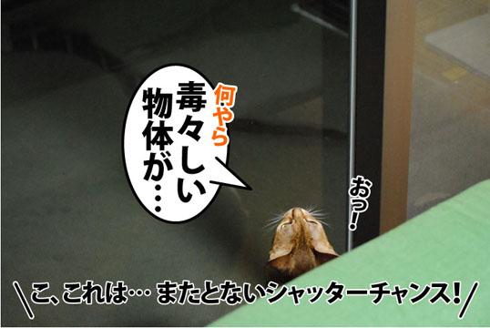 20110906_03.jpg