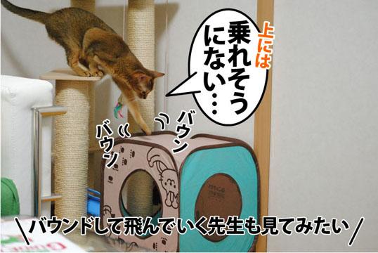 20110908_03.jpg