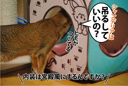 20110908_04.jpg