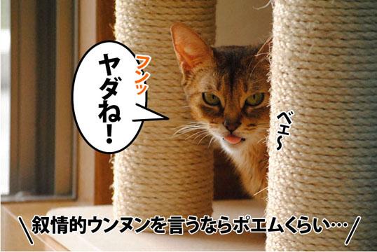 20110910_03.jpg