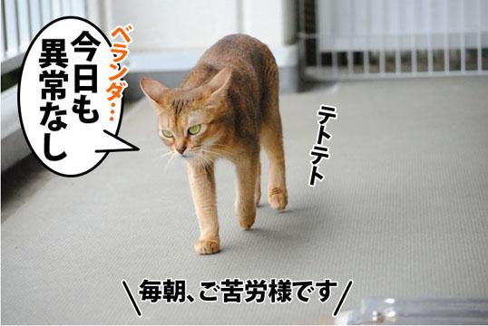 20110912_01.jpg
