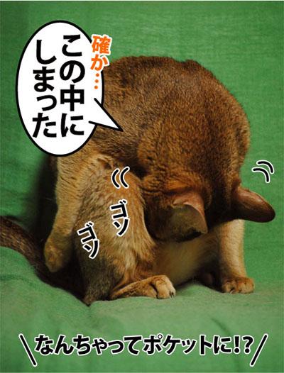 20110916_03.jpg