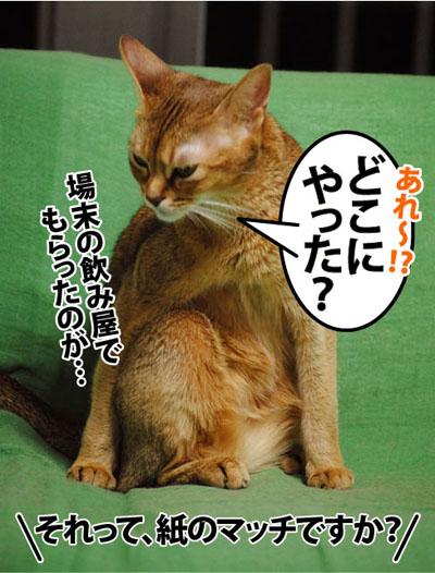 20110916_04.jpg
