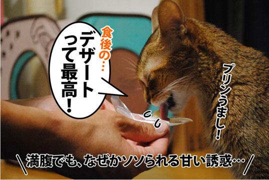 20110921_02.jpg