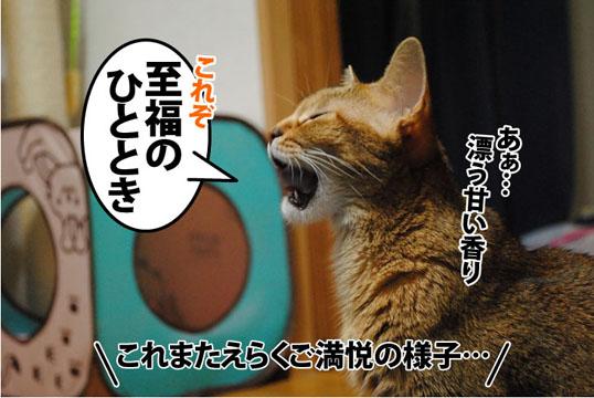 20110921_03.jpg