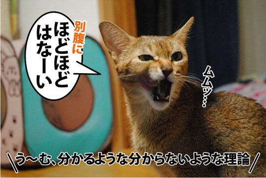 20110921_05.jpg
