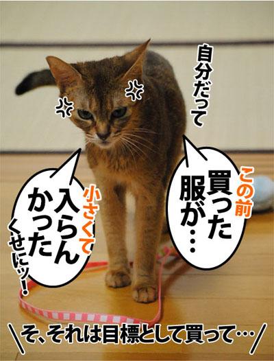 20110922_04.jpg