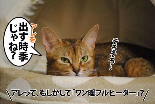 20110923_02.jpg