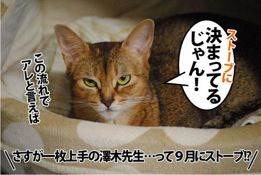 20110923_03.jpg
