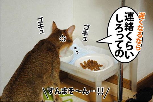 20110927_02.jpg