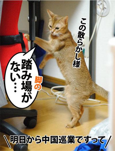 20110927_03_02.jpg