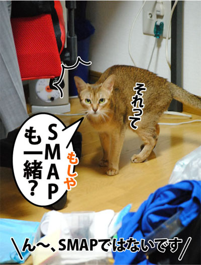20110927_04.jpg