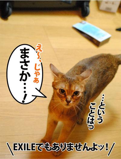 20110927_05.jpg