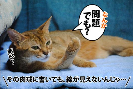 20110928_04.jpg