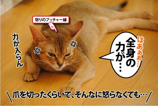 20110929_01.jpg