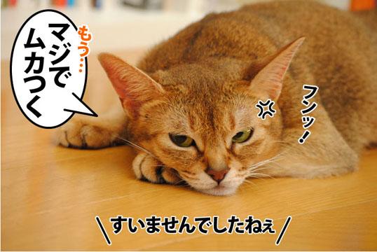 20110929_03.jpg