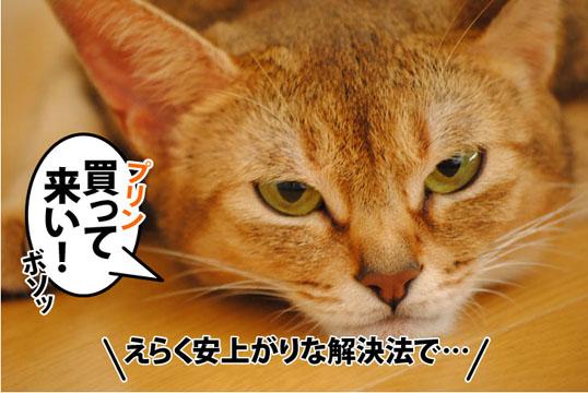 20110929_05.jpg