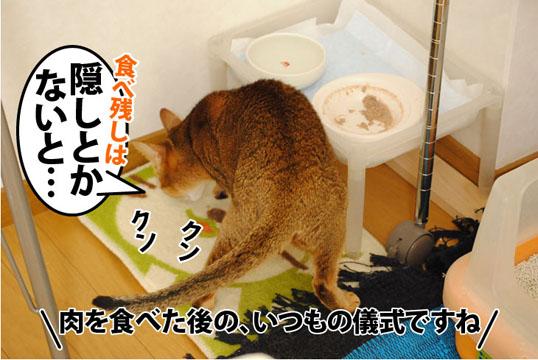 20111001_01.jpg
