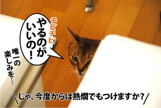 20111001_03.jpg