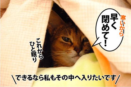 20111004_02.jpg