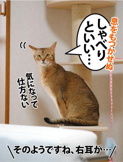 20111006_04.jpg