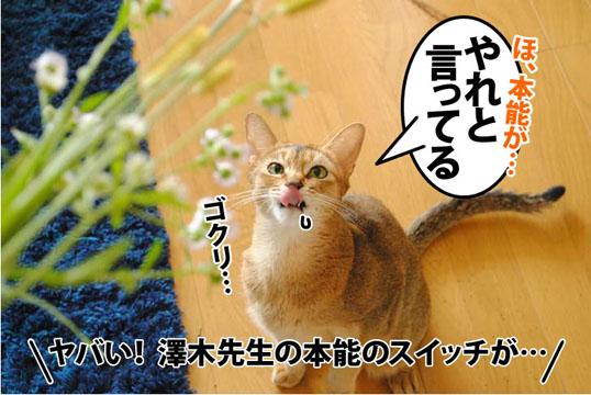 20111007_03.jpg