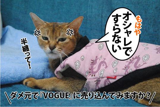 20111008_04.jpg