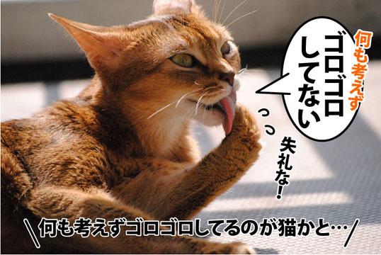 20111009_03.jpg