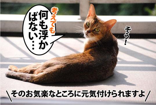20111009_05.jpg