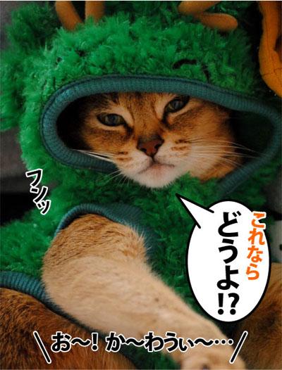 20111011_03.jpg