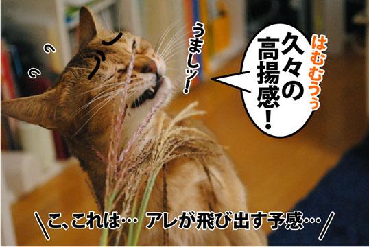 20111012_03.jpg