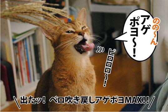 20111012_04.jpg