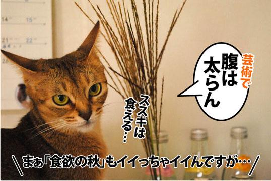 20111013_06.jpg
