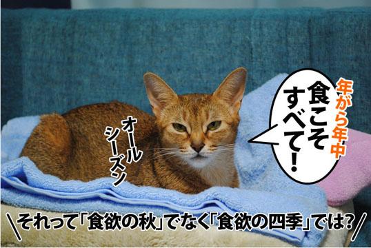 20111013_07.jpg